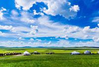 参加草原夏令营的好处有哪些呐?课程是否受欢迎?