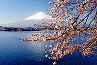 日本游学夏令营花样多,活动方案有哪些?