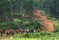 抚仙湖国际户外营地因孩子的喜爱更优秀!