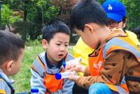 湖南暑期夏令营的活动特色是什么?