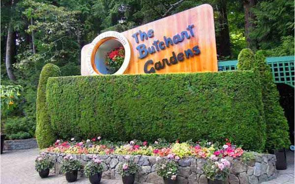 【加拿大游学】温哥华国际语言+东西海岸名校参访亲子夏令营(14天)