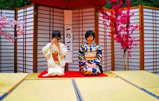 「日本游学」文化探索交流体验营(8天)