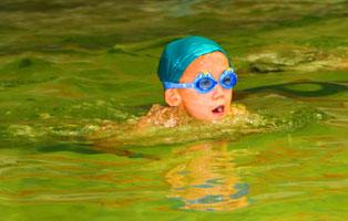 「西安游泳」泳往直前7天夏令营