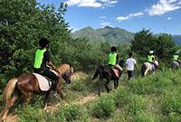 参加马术夏令营,骑马能锻炼哪些能力
