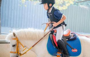 「广东体育」2021S-equestrian东莞马术专业夏令营(5天)| 澳洲PCA体系,专业可进阶