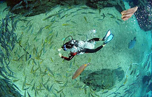 「海南海滨」2021S-diving水肺潜水专业夏令营(OW)·三亚(6天)|征服世界71%的海洋