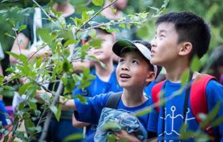 「吉林户外」2021松花湖自然博物夏令营(13天)| 去22℃森林氧吧向阳生长