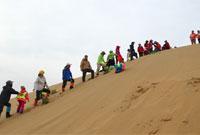 青少年参加沙漠夏令营都会有哪些收获呐?