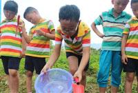 适合中学生参加的乡村夏令营有哪些?