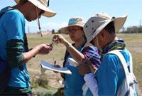 新疆有哪些比较合适的夏令营基地?有好的线路推荐吗?