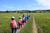 国内有哪些比较优质的励志研学的特色夏令营活动路线?
