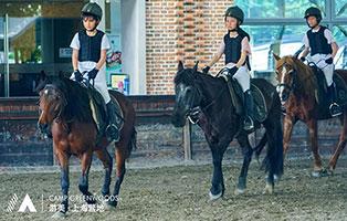「上海户外」2021马术冬令营(6天)| 骑士养成计划