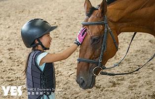 「北京户外」2021马术冬令营(6天)| 骑士养成计划