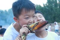 郑州传统文化夏令营有哪些?