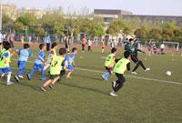 2021全国青少年足球夏令营去哪里?品牌活动抢先看!